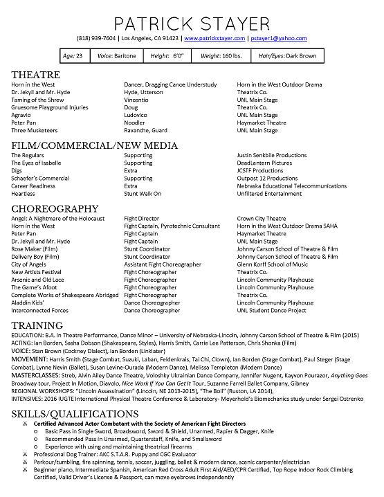 patrick stayer resume